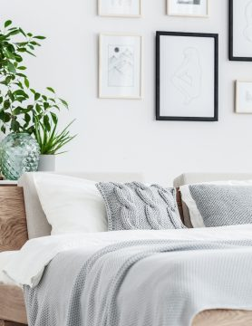 Bedding Sheets And Decor