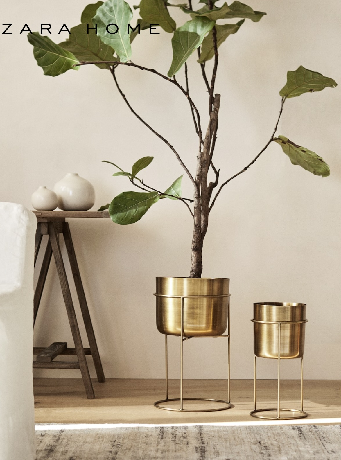 Gold plantar with Plant from Zara Home
